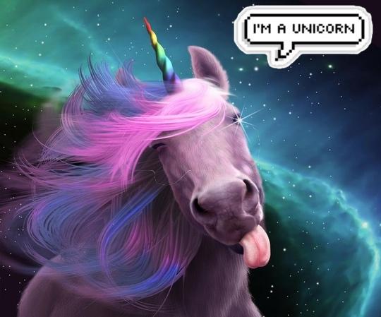 eu sou um uniconrio 3